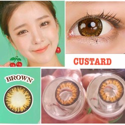 contact lens - kính áp tròng màu nâu custard