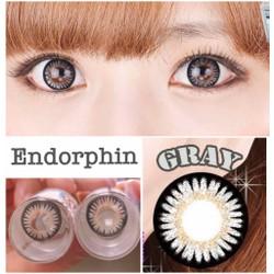 contact lens - kính áp tròng màu xám endorphin