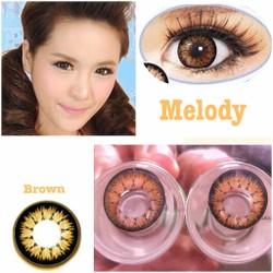 contact lens - kính áp tròng màu nâu melody