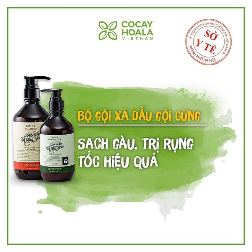 Bộ dầu gội xả Dầu gội gừng ONA sản phẩm hữu cơ kích thích mọc tóc và ngăn rụng tóc