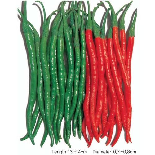 Gói 0.2g hạt giống ớt trái dài hàn quốc - 8907838 , 18514336 , 15_18514336 , 12000 , Goi-0.2g-hat-giong-ot-trai-dai-han-quoc-15_18514336 , sendo.vn , Gói 0.2g hạt giống ớt trái dài hàn quốc