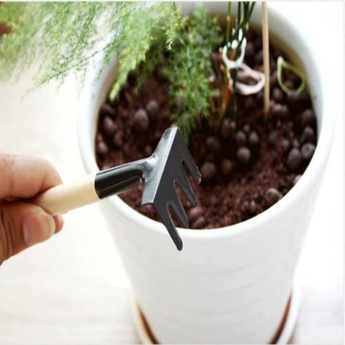 Bộ dụng cụ làm vườn mini : 3 món gồm 1 xẻng, 1 xúc, 1 cào - 8920674 , 18533121 , 15_18533121 , 35000 , Bo-dung-cu-lam-vuon-mini-3-mon-gom-1-xeng-1-xuc-1-cao-15_18533121 , sendo.vn , Bộ dụng cụ làm vườn mini : 3 món gồm 1 xẻng, 1 xúc, 1 cào