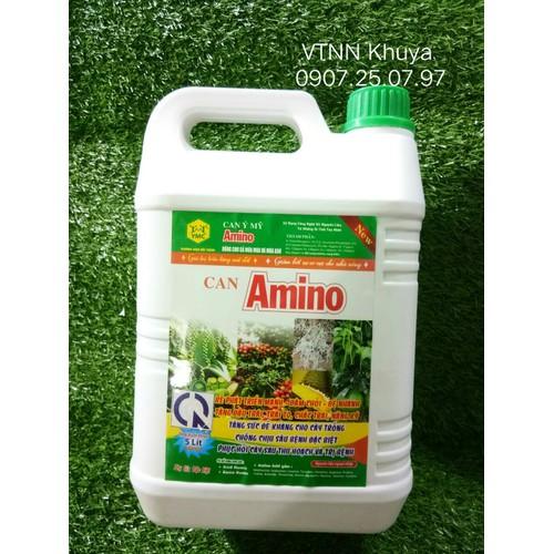 Can Amino Ý Mỹ YMC 08 Giúp Ra rễ Đâm chồi Đẻ nhánh Đậu trái 5 lít