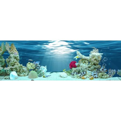 Tranh phông nền dán hồ cá VTC Aqua -040 KT 120 x 60 cm - 8957651 , 18584323 , 15_18584323 , 189000 , Tranh-phong-nen-dan-ho-ca-VTC-Aqua-040-KT-120-x-60-cm-15_18584323 , sendo.vn , Tranh phông nền dán hồ cá VTC Aqua -040 KT 120 x 60 cm