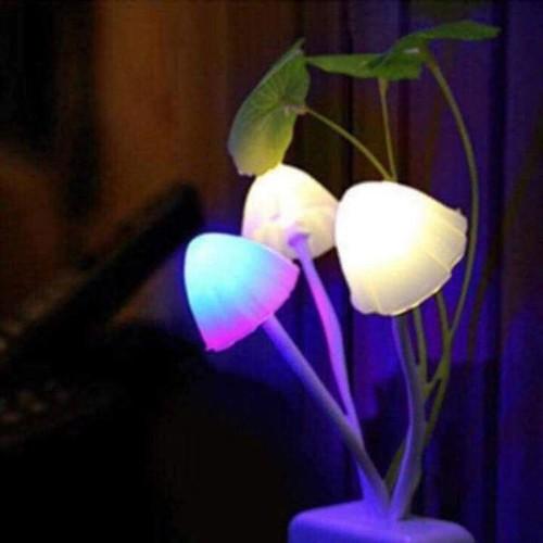 đèn ngủ hình nấm 2c