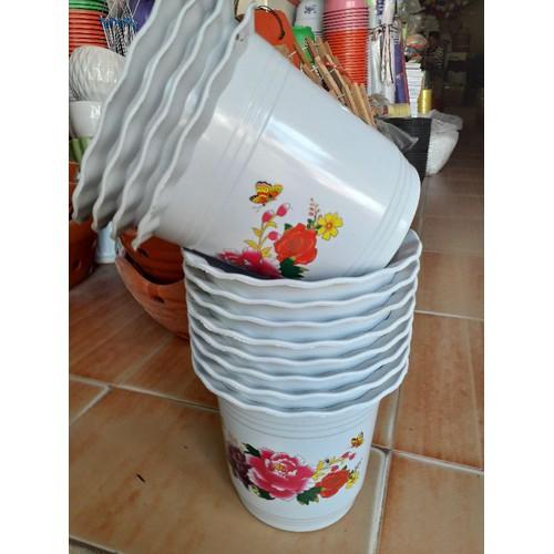 Chậu trồng cây hoa giá khuyến mãi rộng 20cm - 7643801 , 18633767 , 15_18633767 , 14800 , Chau-trong-cay-hoa-gia-khuyen-mai-rong-20cm-15_18633767 , sendo.vn , Chậu trồng cây hoa giá khuyến mãi rộng 20cm