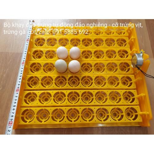 Bộ Khay Đảo Nghiêng Tự Động Ấp Trứng Gà Trứng Vịt - Có Motor Kèm Theo - khay đảo trứng