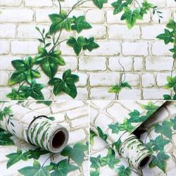 giấy dán tường keo sẵn