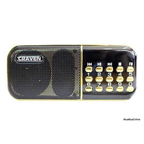 Loa Thẻ Nhớ USB Đài FM Craven CR25A