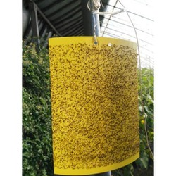 Miếng Bẫy Ruồi Vàng kích thước lơn 40 - 25cm