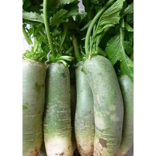 củ cải xanh