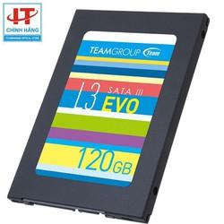 Ổ cứng SSD Team Group L3 Evo 120GB - Bảo hành chính hãng - Evo 120GB