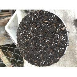 1 ký đất trồng sen đá xương rồng loại tốt