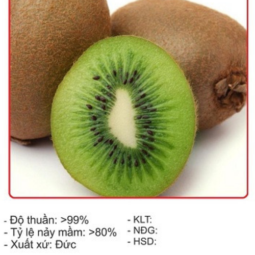 Hạt Giống Cây Kiwi - 30 Hạt