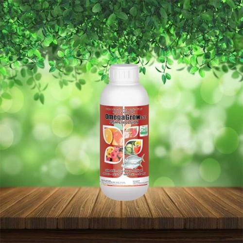 Phân bón chuyên dùng trồng rau sạch OmegaGrow chai 500ml