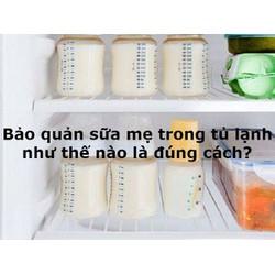 Combo 2 Hộp Than Tre Hoạt Tính Khử Mụi Tủ Áo, Tủ Lạnh, Tủ Lưu Trữ