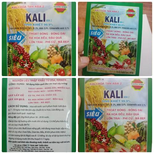 Phân bón cao cấp Kali Aba 2 siêu ra hoa đậu trái - 20gr