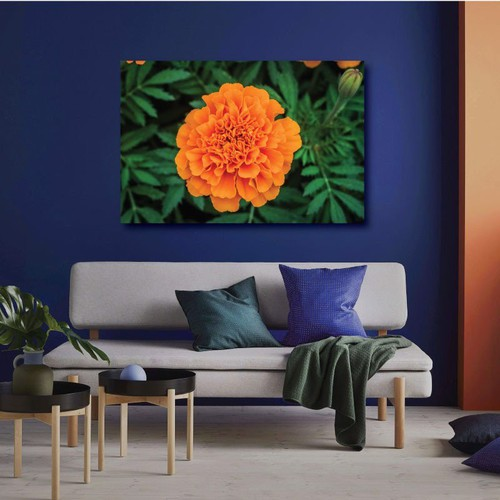 Tranh Canvas Alan Orange Flower
