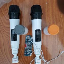 micro loa kéo không dây giá rẻ- 2 tay mic