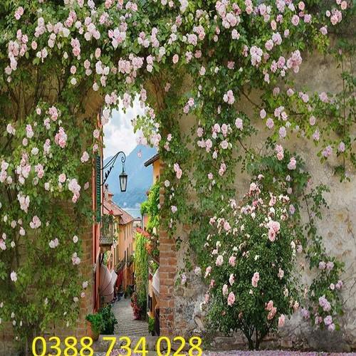 tranh gạch men 3d hoa hồng - 11779951 , 19133123 , 15_19133123 , 1200000 , tranh-gach-men-3d-hoa-hong-15_19133123 , sendo.vn , tranh gạch men 3d hoa hồng