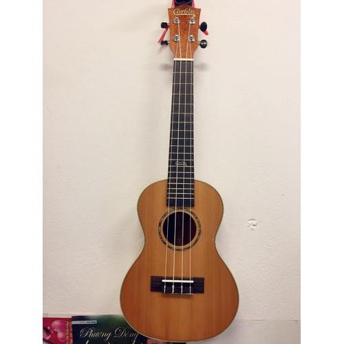 Đàn ukulele concert đàn ukuele concert màu gỗ đẹp