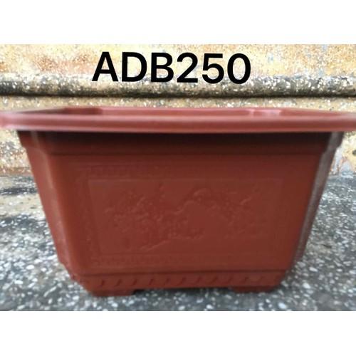 5 chậu nhựa trồng cây chữ nhật 250
