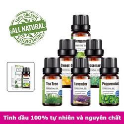 Tinh dầu tự nhiên nguyên chất tinh dầu sả, hoa hồng, lavender, bạc hà, khuynh diệp, bưởi, cam, chanh, quế, ngọc lan tây