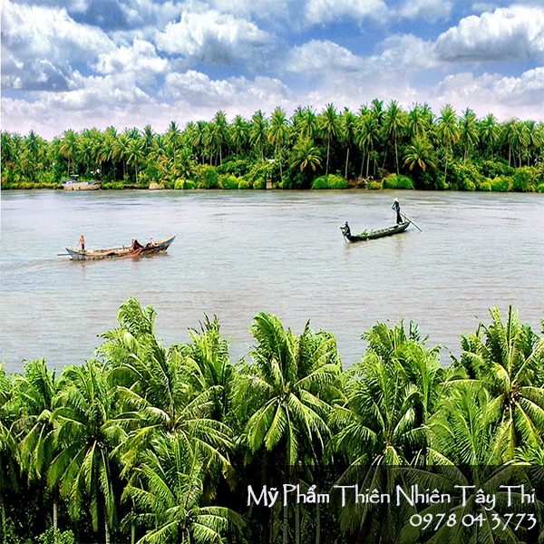 Dầu Dừa Nấu Thủ Công Tây Thi Chai 50ml - 45232 7