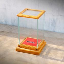 Hộp kính trưng bày tượng