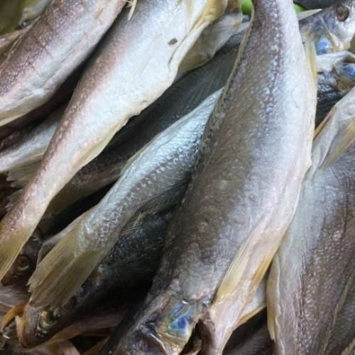 1 kg khô cá đù