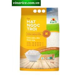 Gạo Hạt Ngọc Trời Kim Nguyên 5kg - gạo trắng hạt dài cơm mềm dẻo thơm - VNRKIMNGUYEN5KG
