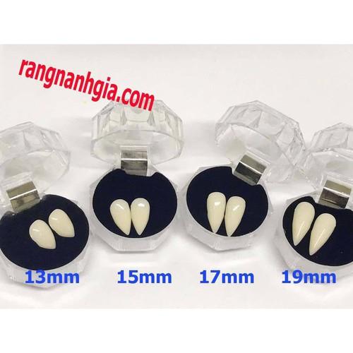 Combo răng nanh răng khểnh giả sứ kèm keo gắn răng ms14