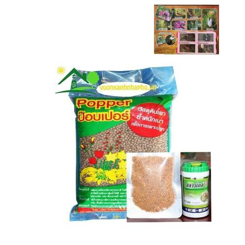 combo bộ chăm sóc sen đá xương rồng đất trồng thuốc diệt con trùng phân tan chậm hàng thailand - 11422834 , 18942154 , 15_18942154 , 140000 , combo-bo-cham-soc-sen-da-xuong-rong-dat-trong-thuoc-diet-con-trung-phan-tan-cham-hang-thailand-15_18942154 , sendo.vn , combo bộ chăm sóc sen đá xương rồng đất trồng thuốc diệt con trùng phân tan chậm hàng