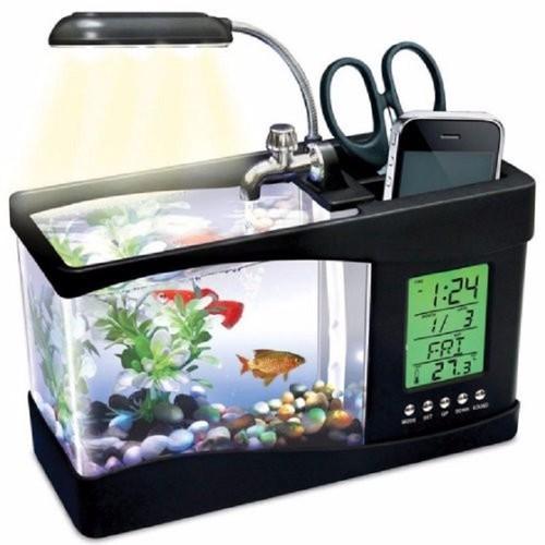 Bể cá phong thủy để bàn, Bể cá mini sử dụng