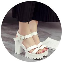 Giày sandal đế thô 2 quai 03 |Giày sandal đế thô nữ