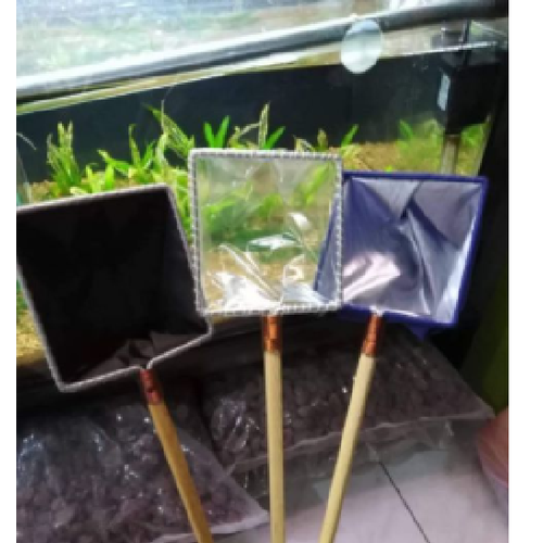 Vợt nước dùng cho cá cảnh