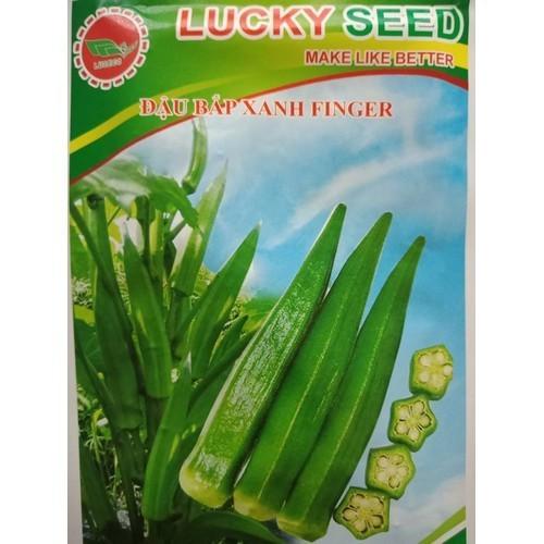 Hạt giống đậu bắp xanh 10gr