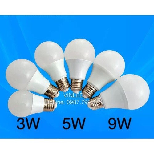 Hàng chuẩn Giá sỉ Bóng đèn LED BULB 3W 5W 9W Bảo hành 2 năm