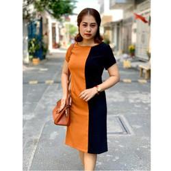 Đầm big size trung niên phối 2 màu