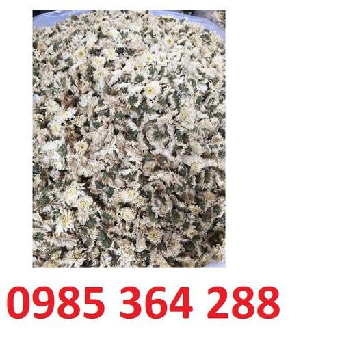 Hoa cúc trắng khô 1kg - 11839914 , 19932507 , 15_19932507 , 290000 , Hoa-cuc-trang-kho-1kg-15_19932507 , sendo.vn , Hoa cúc trắng khô 1kg