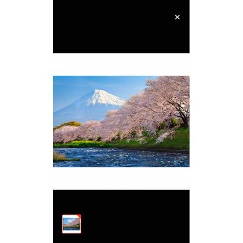 Tranh dán tường phong cảnh 110x90 cm - 11677116 , 19967703 , 15_19967703 , 245000 , Tranh-dan-tuong-phong-canh-110x90-cm-15_19967703 , sendo.vn , Tranh dán tường phong cảnh 110x90 cm