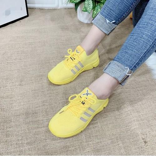 Giày bata thun cao cấp
