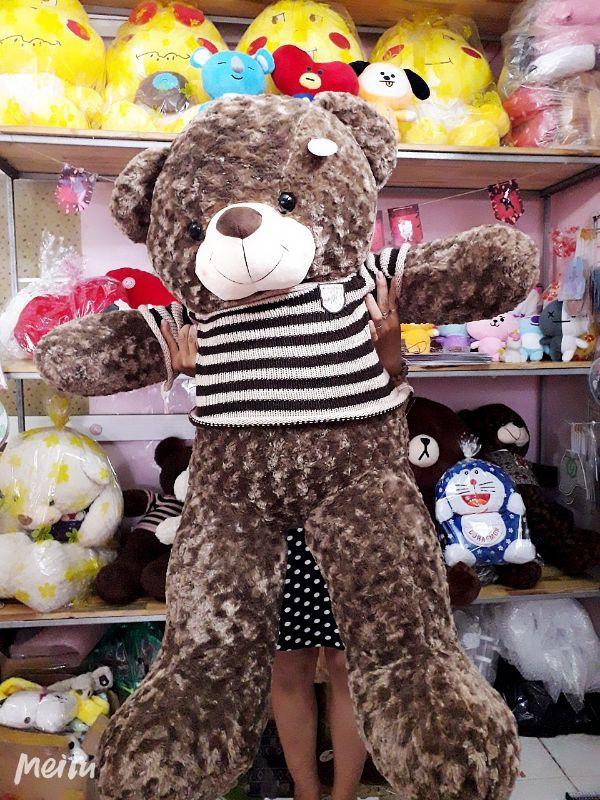 Gấu Bông Teddy SOCOLA Cao Cấp 1m6 4