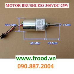 Động cơ từ Brushless phát điện 3 pha 25w