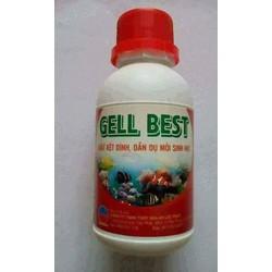 Gel Best 3in 1 vừa kết dính vừa cùng cấp protein và vitamin