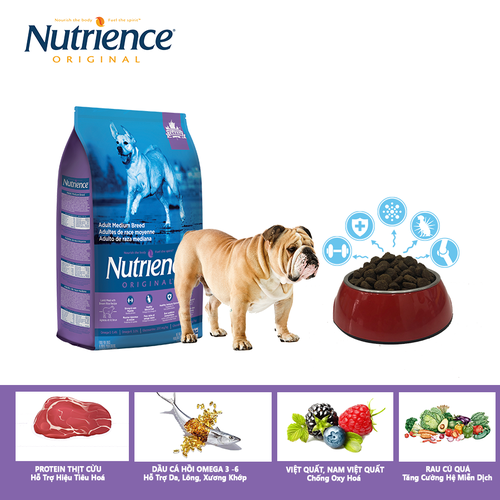 {1kg} thức ăn cho chó lớn trưởng thành nutrience original - thịt cừu, rau củ và trái cây tự nhiên