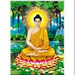 Tranh đính đá Phật LV047 50x65cm chưa đính