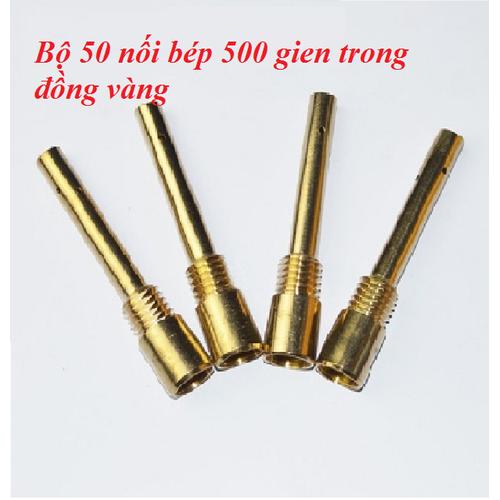Combo 50 nối bép 500 gien trong đồng vàng - e013-d