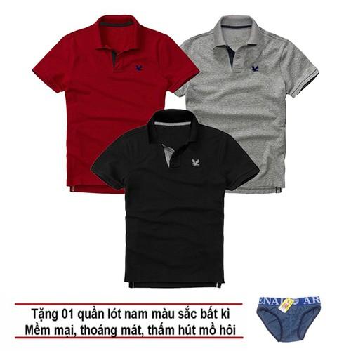 Áo thun nam logo mẫu mới, combo 3 áo [ đỏ đô, xám đậm, đen ] tặng kèm 1 quần lót nam