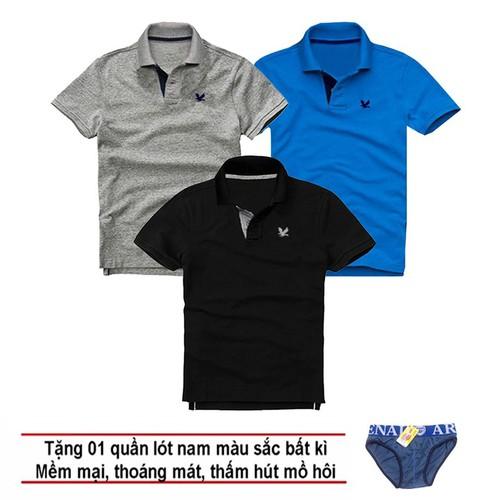 Áo thun nam logo mẫu mới, combo 3 áo [ xám đậm, xanh dương, đen ] tặng kèm 1 quần lót nam